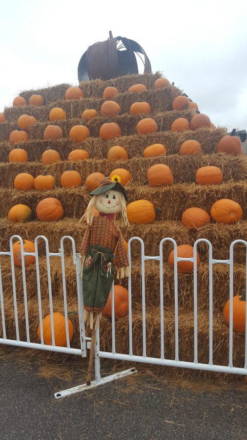 Students Participate in Annual Pumpkinfest