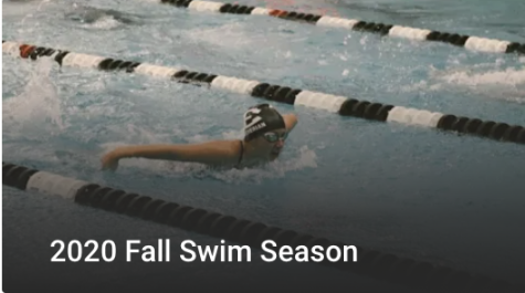 Swim and Dive Head to LVC Championships