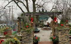 Three Cedars Farm Open for Holiday Visits