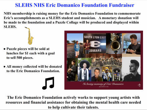 NHS Fundraiser Continues for the Eric Domanico Foundation